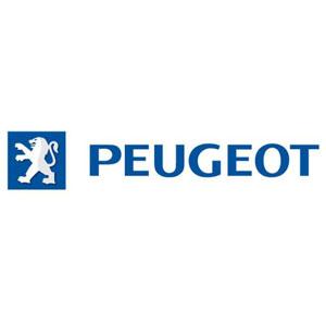 Koppelingschijven en drukgroepen Peugeot
